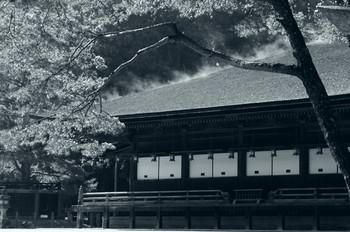 雨後の御影堂.jpg