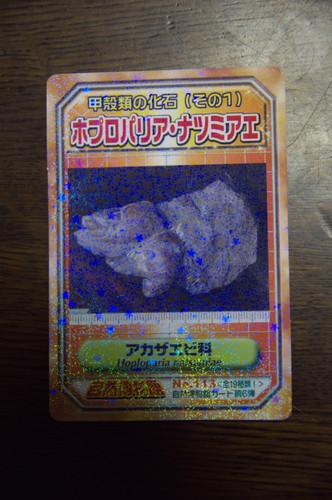 海南幻のカード.jpg